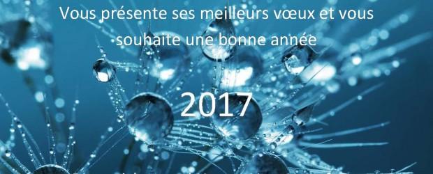 Juriconnexion vous souhaite une bonne année 2017